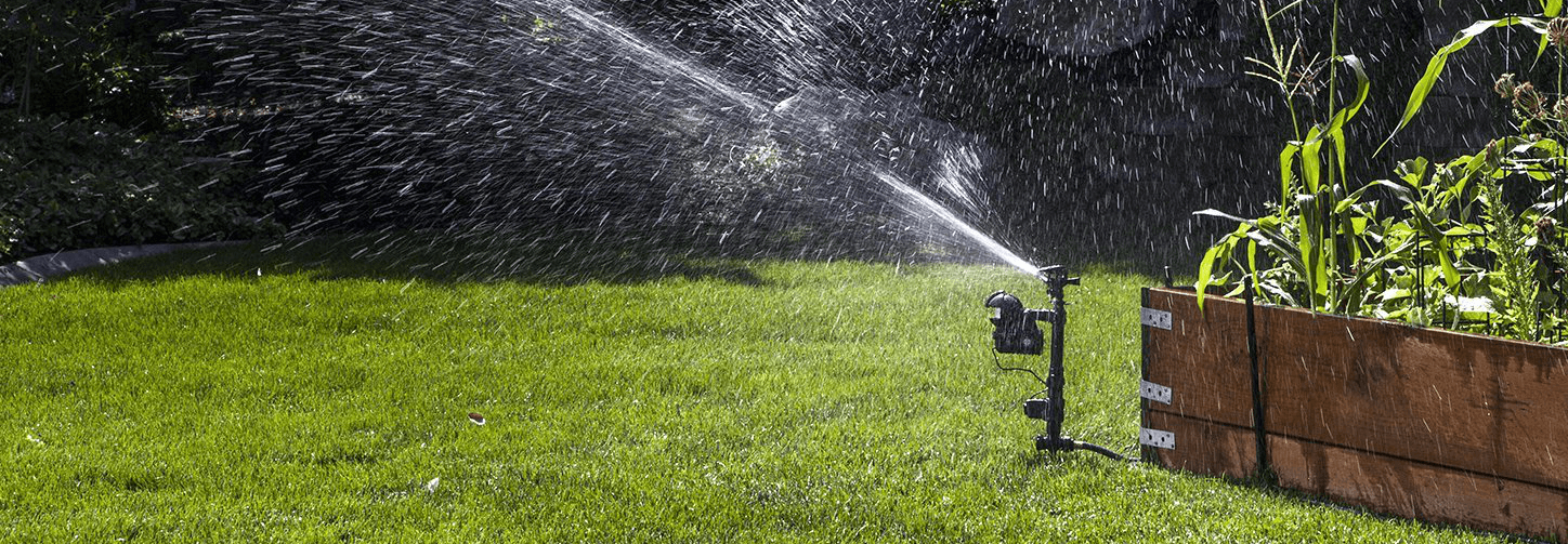 Best Motion Activated Sprinkler