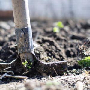 5 Ways to Repurpose Old Garden Tools