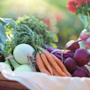 What are the Healthiest Veggies & Herbs to Grow in Your Garden?