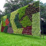 Diy Wall Gardening