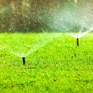 How to Design a Sprinkler System?