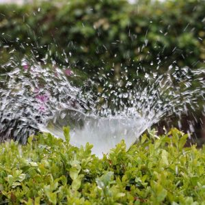 How Do Garden Sprinklers Work?
